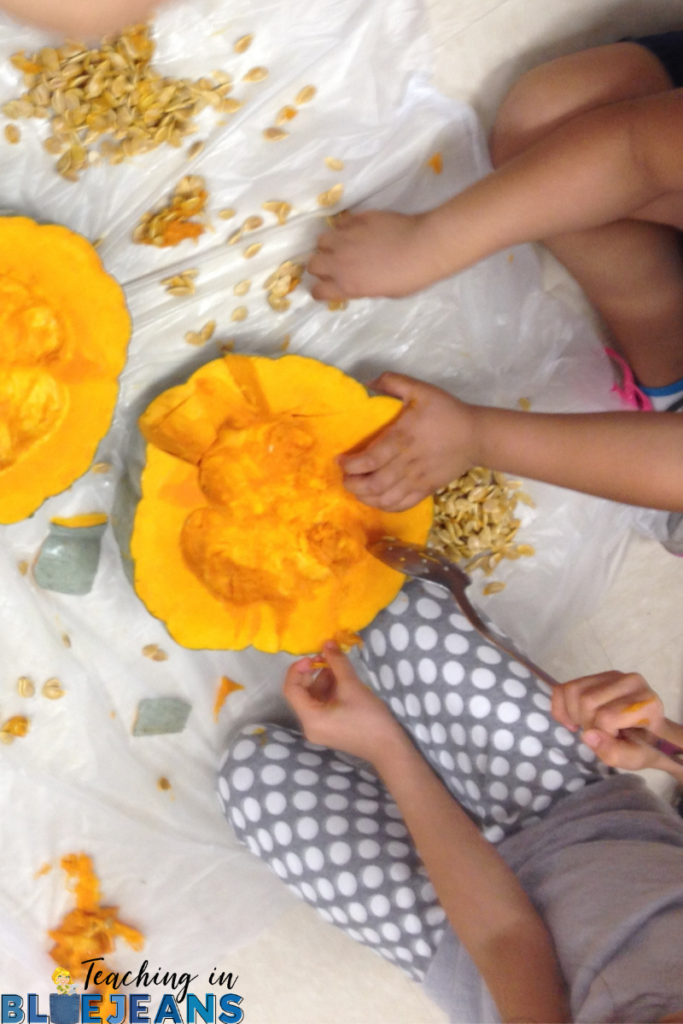 pumpkin science the inside of the pumpkin