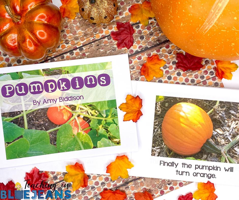 pumpkin science emergent reader for primary grades