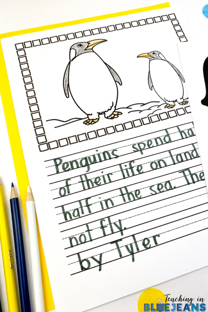 penguin picture writing prompt completed with expository writing